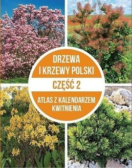 Drzewa i krzewy Polski cz.2