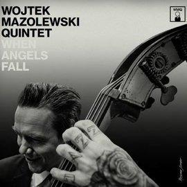When Angels Fall (edycja winylowa)
